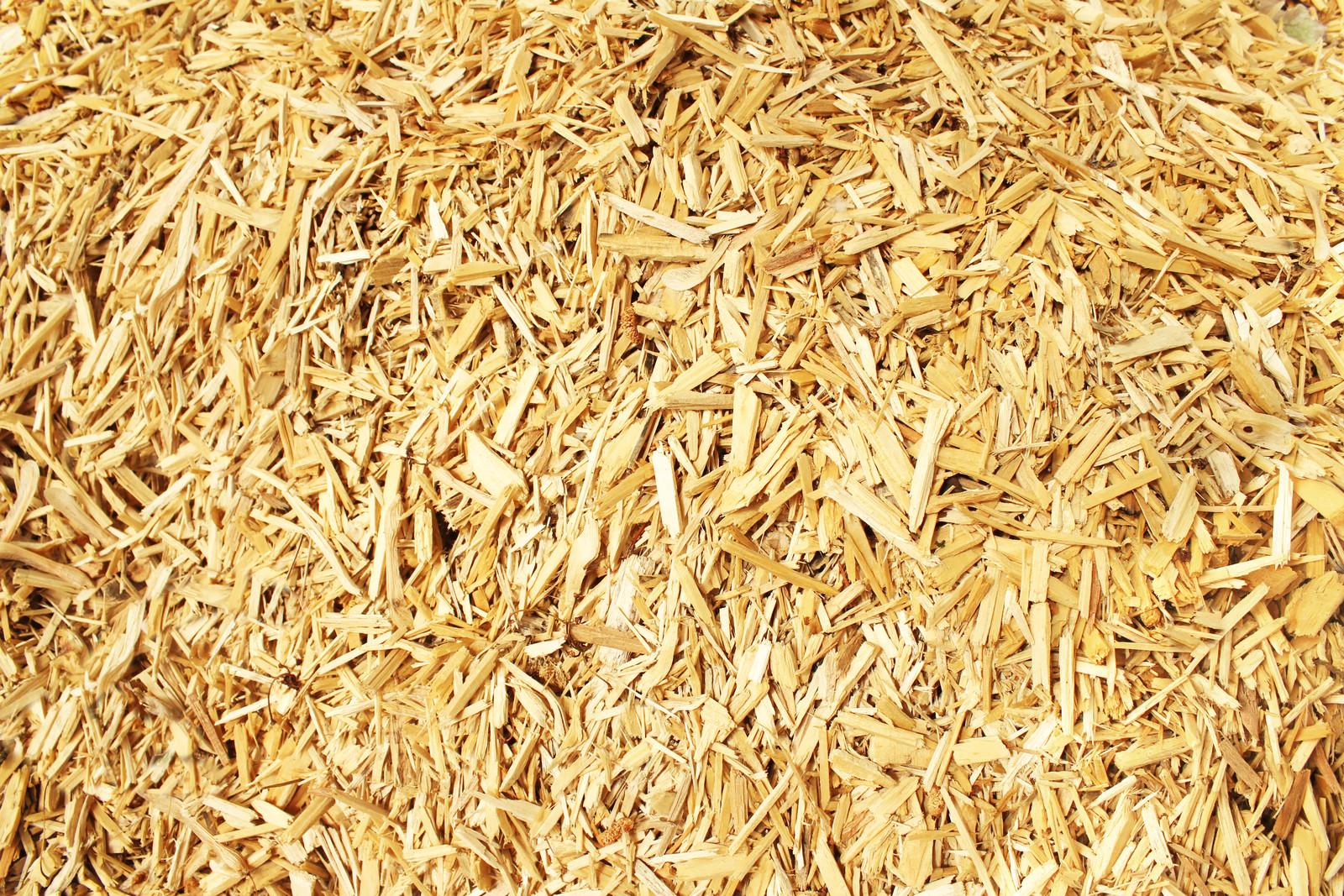 REBI SLU: Biomasa y beneficios medioambientales