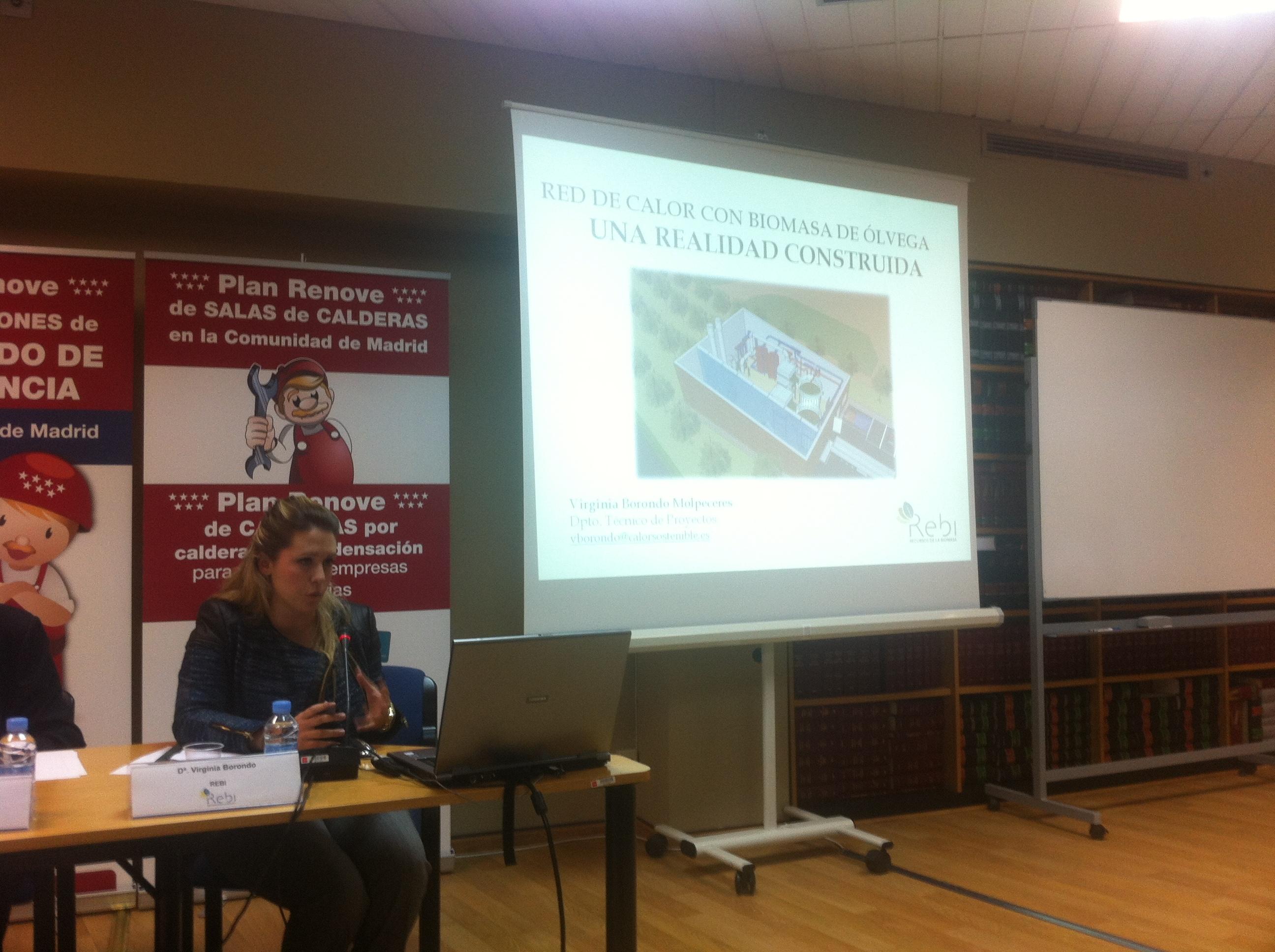 Virginia Borondo exponiendo en las jornadas celebras en Madrid el 16 de octubre de 2013 en Madrid sobre Redes de Calor