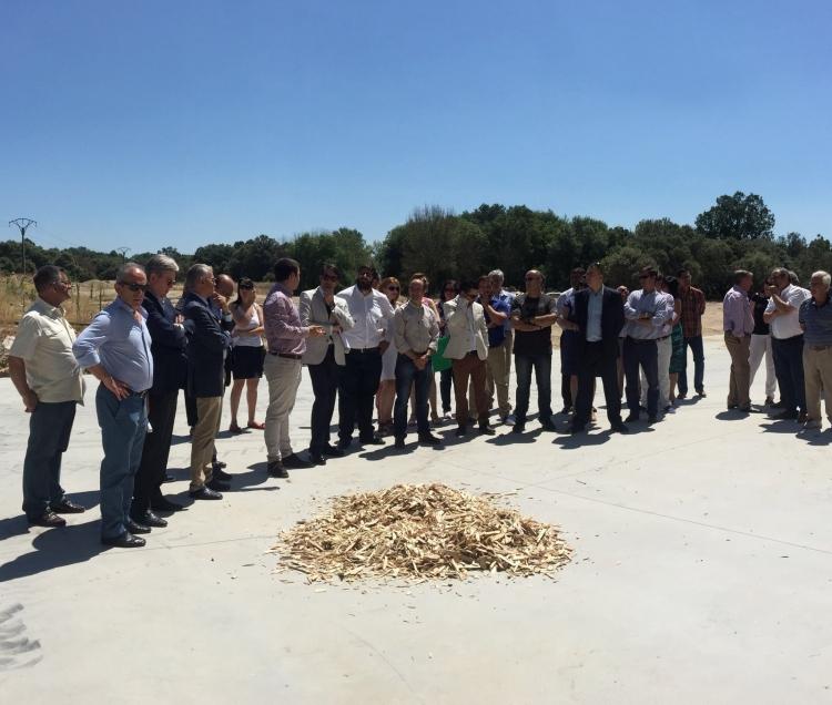 REBI SLU: Éxito en los primeros cuatro años de funcionamiento de la planta de astillado de Mombeltrán (Ávila)